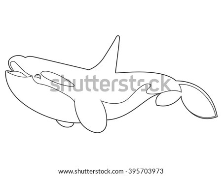 Young Killer Whale Stock Images, Royalty-Free Images