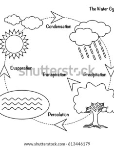 Vector schematic representation of the water cycle in nature illustration diagram also stock rh shutterstock