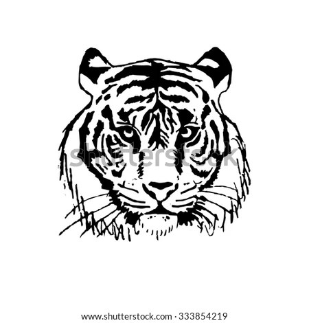 Vector Illustrationthe Face Tiger Stock Vector 333854219