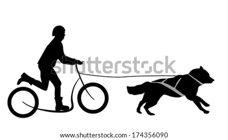 Dog Harness Stock Images, Royalty-Free Images & Vectors
