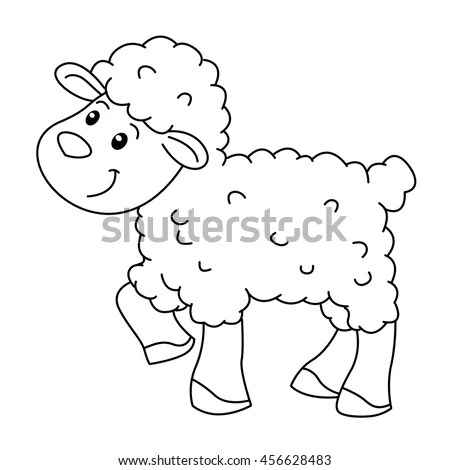 Sheep Stock Photos And Pictures