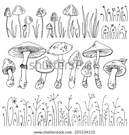 Set mushrooms, forest herbs, poisonous mushrooms. Vector