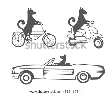 Lowrider Bike Stock Images, Royalty-Free Images & Vectors