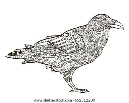 Vector Illustration Raven Silhouette Original Ethnic Stock
