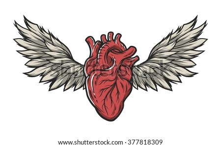 anatomical heart wings tattoo signsymbol