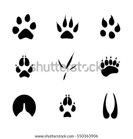 Vector Illustration Animal Birds Footprints Icon Stock