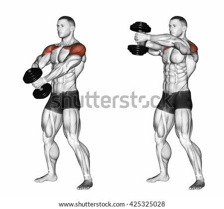 Pectoralis Major Stock Images, Royalty-Free Images