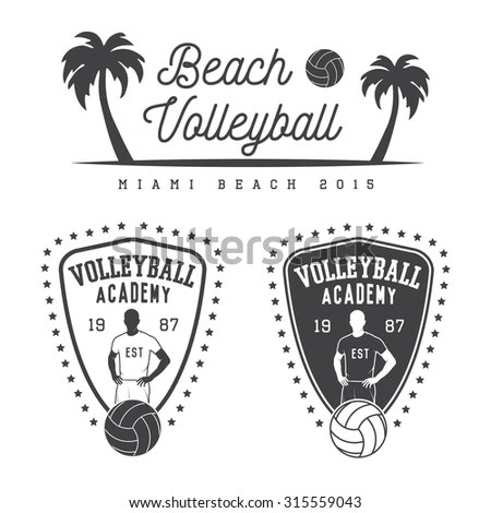 Volleyball Logo Stock Photos, Royalty-Free Images