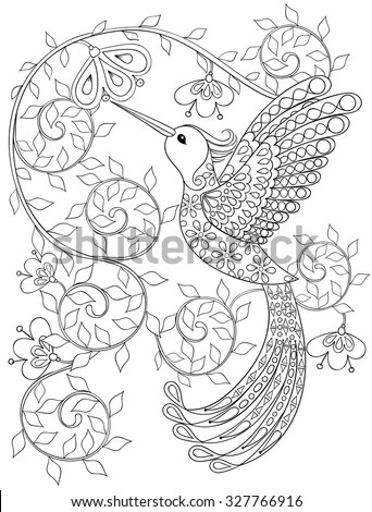 Coloring Page Hummingbird Zentangle Flying Bird Stock