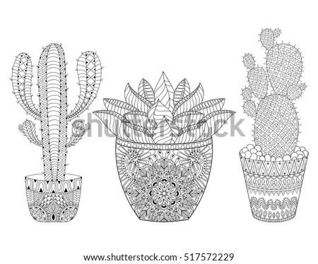 Zentangle Cactus Set Vector Illustration Desert Stock