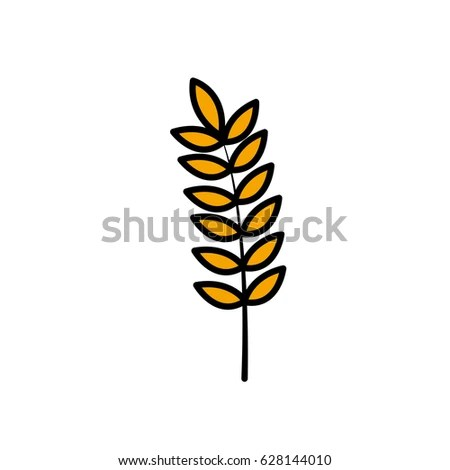Wheat Spike Yellow Isolated On White Stock Vector