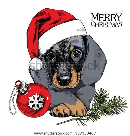 christmas poster portrait dog dachshund