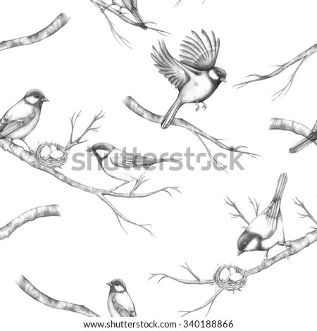 Seamless Pattern Hand Drawn Birds Titmouse Stock