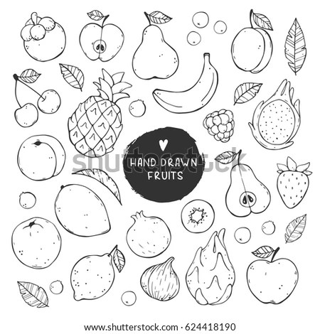 Set Outline Sketch Different Fruits Stock Vector 204875803