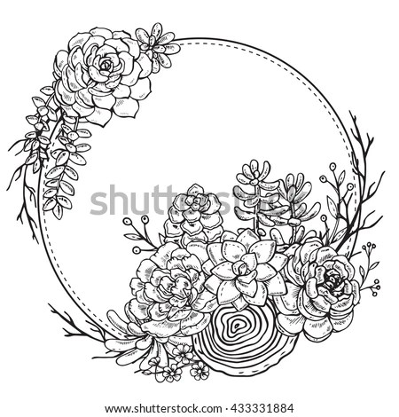 Succulent Stock Photos, Royalty-Free Images & Vectors