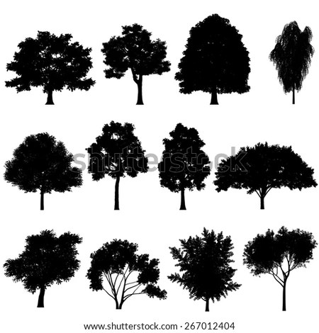 Vector Illustration Tree Silhouettes Stock Vector