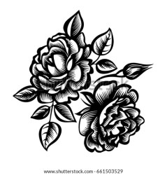 roses bouquet vector stylized flowers shutterstock decorative peony blackandwhite preview pic