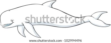 beluga whale cartoon happy vector angry shutterstock weasel expression preview sketch