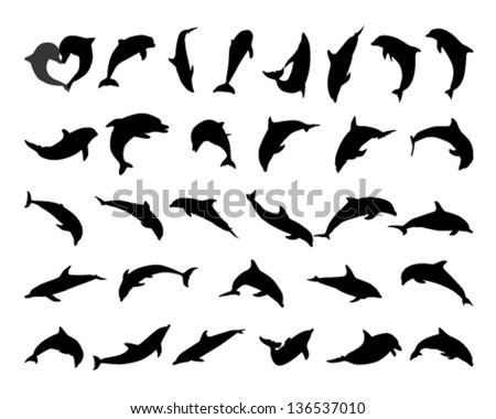 Dolphins Stock Images, Royalty-Free Images & Vectors