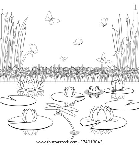 Coloring Page Pond Inhabitants Plants Stock Vector