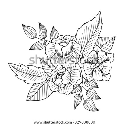 Plumeria Flowers Coloring Book Raster Illustration Stock