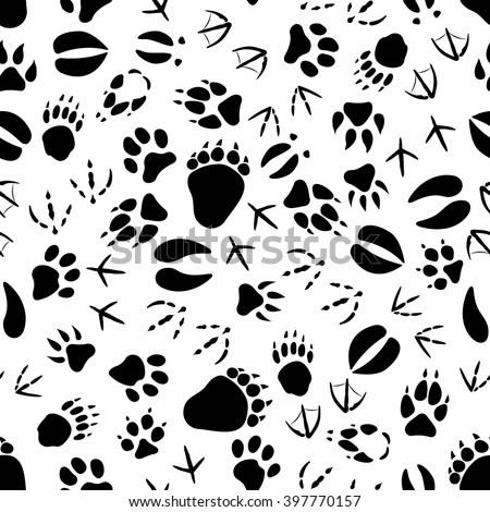 Animal Footprints Stock Photos, Royalty-Free Images