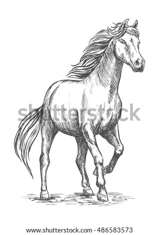 Horses Stock Images, Royalty-Free Images & Vectors