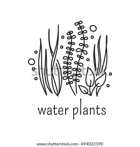 Water-plant Stock Images, Royalty-Free Images & Vectors