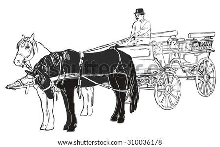 Pony Harness Wagon Pony Dressage Wiring Diagram ~ Odicis