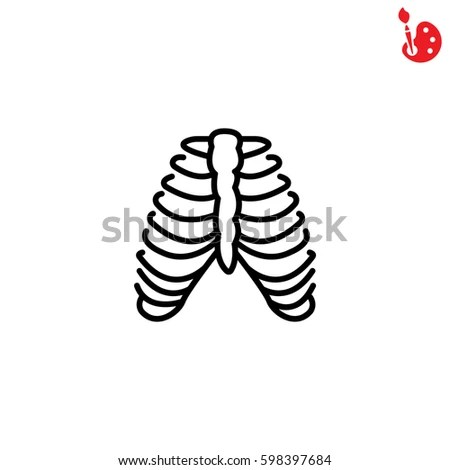 Breastbone Stock Images, Royalty-Free Images & Vectors