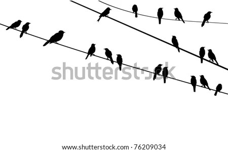 Vector Birds Sitting On Wire Stock Vector 76209034