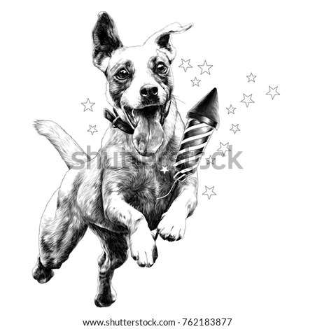Bomb Dog Stock Images, Royalty-Free Images & Vectors