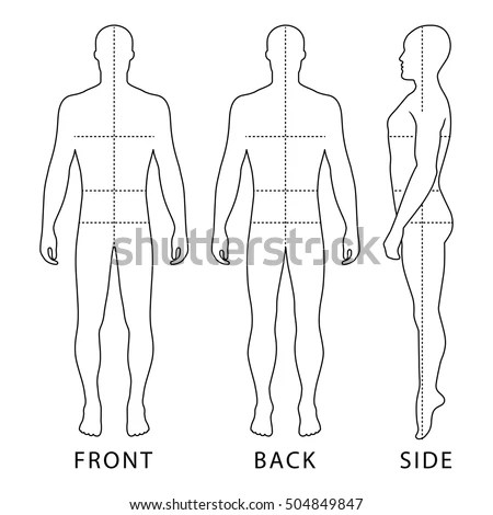 Human Body Stock Images, Royalty-Free Images & Vectors