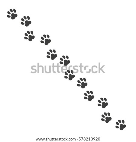 Dog Tracks Stock Images, Royalty-Free Images & Vectors
