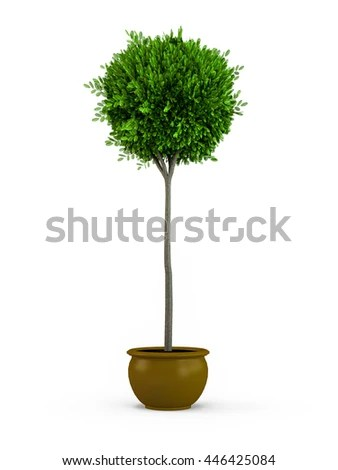 Topiary Stock Photos Royalty Free Images Amp Vectors