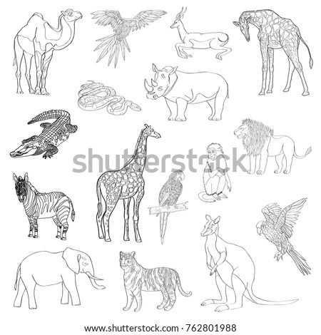 Giraffe Outline Stock Images, Royalty-Free Images