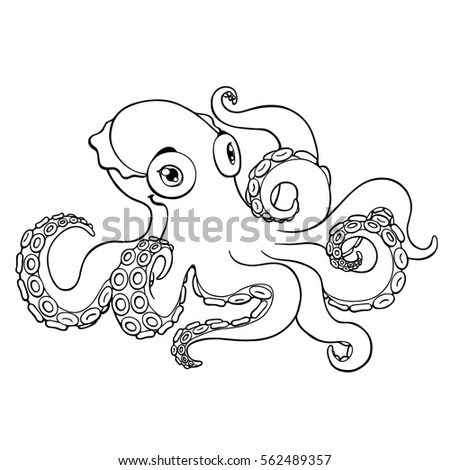 Cephalopod Stock Images, Royalty-Free Images & Vectors