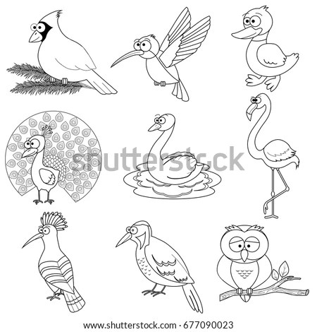 Outline Drawing Stock Images, Royalty-Free Images