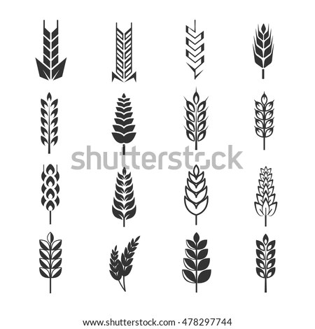 Set Simple Wheat Ears Icons Design Stock Vector 397606390