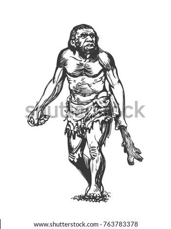 Anthropology Stock Images, Royalty-Free Images & Vectors