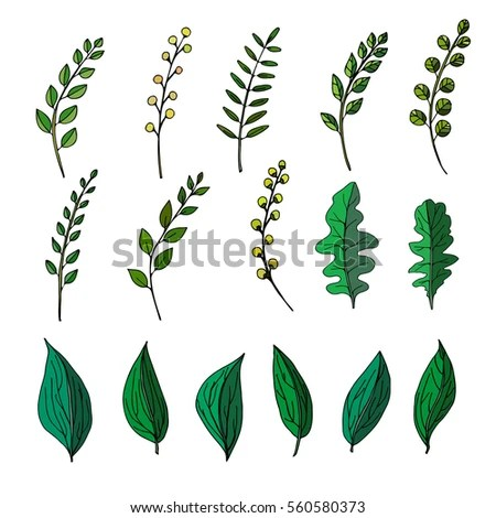 Plant Doodle Stock Images Royalty Free Images Amp Vectors