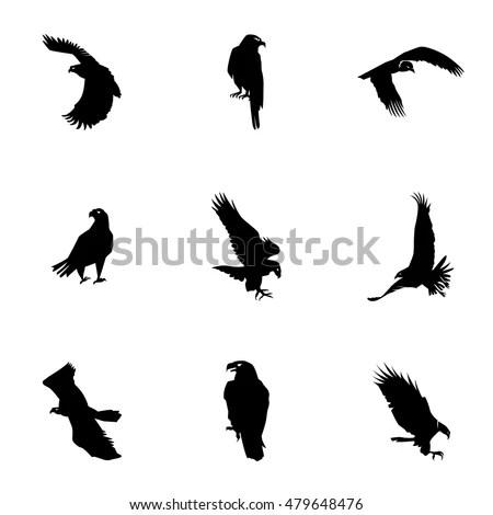 Eagle Vector Simple Eagle Illustration Editable Stock
