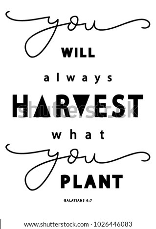 Hand Lettering You Will Always Harvest Stock Vector