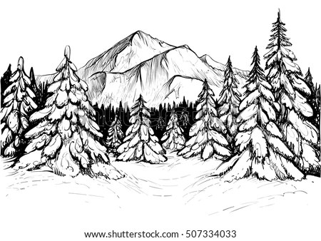 Winter Forest Sketch Black White Vector Stock Vector