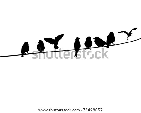 Bird Silhouette Stock Photos, Images, & Pictures