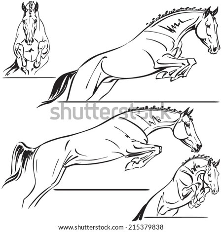Equitation Stock Photos, Royalty-Free Images & Vectors