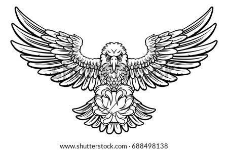 Eagles Imágenes pagas y sin cargo, y vectores en stock