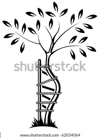 Orthopedic Symbol Stock Images, Royalty-Free Images