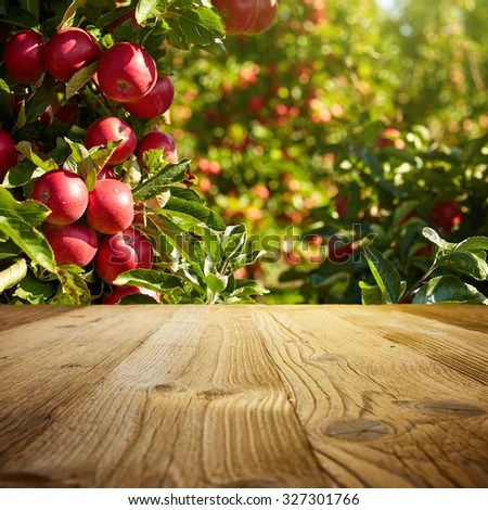 Free Scenic Fall Wallpaper Autumn Apple Orchard Background Stock Photo Royalty Free
