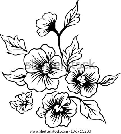 Drawings Lines Flowers Beautiful Vector Stock Vector
